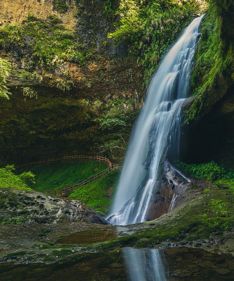 沐浴在森林之中